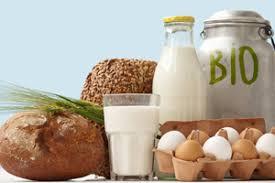 В российских магазинах появятся биопродукты